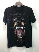 Givenchy T Shirt fgc461